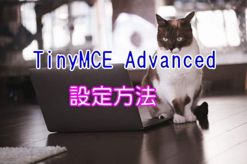 スタイルが表示されない!TinyMCE Advancedの設定方法と使い方【LION MEDIA】