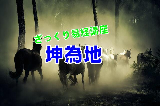 坤為地~おとなしい牝馬~【ざっくり易経講座その2】